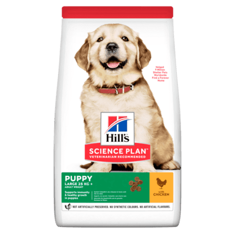 SCIENCE PLAN Large breed PUPPY CHICKEN 12KG